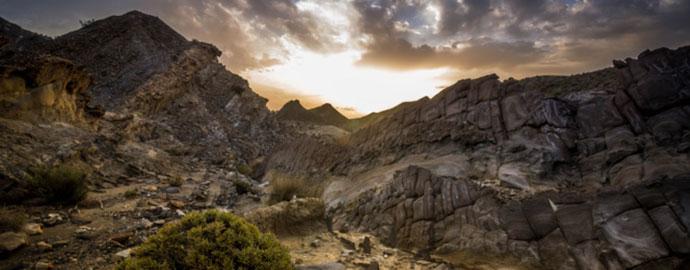 La biodiversidad del desierto de Almería sufre una grave amenaza