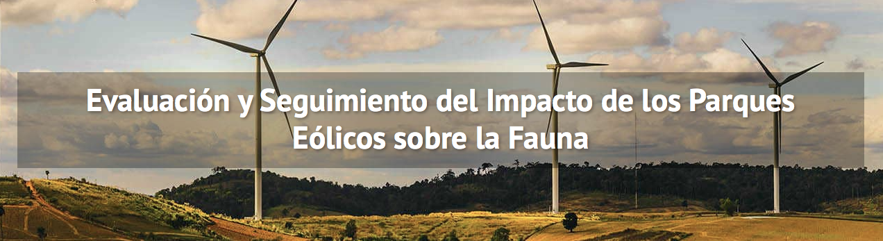 Curso de Evaluación y Seguimiento del Impacto de los Parques Eólicos sobre la Fauna