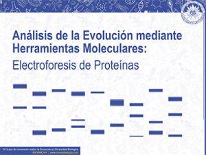 Análisis de la Evolución mediante Herramientas Moleculares: Electroforesis de Proteínas